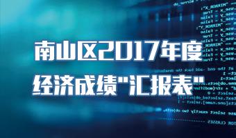 """南山区2017年度经济成绩""""汇报表"""""""