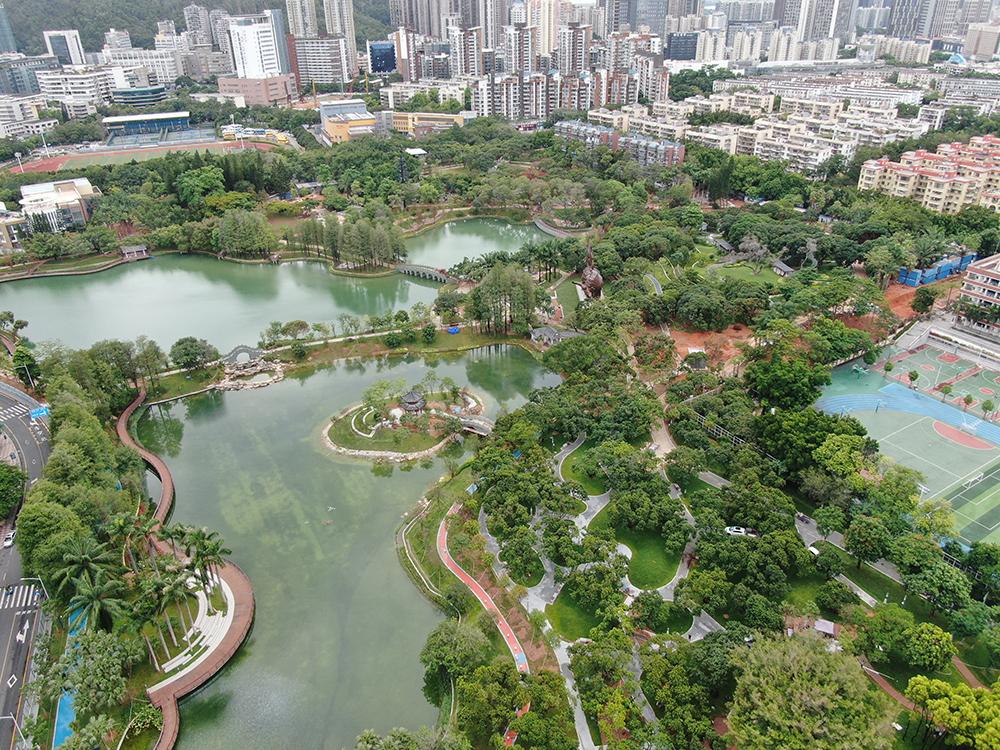 """南山区四海公园提升改造、南海公园一期项目计划""""十一""""前建成开放"""